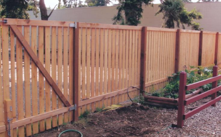Rambler Cedar Fence With Spaced Boards Back Side Cedar Fence