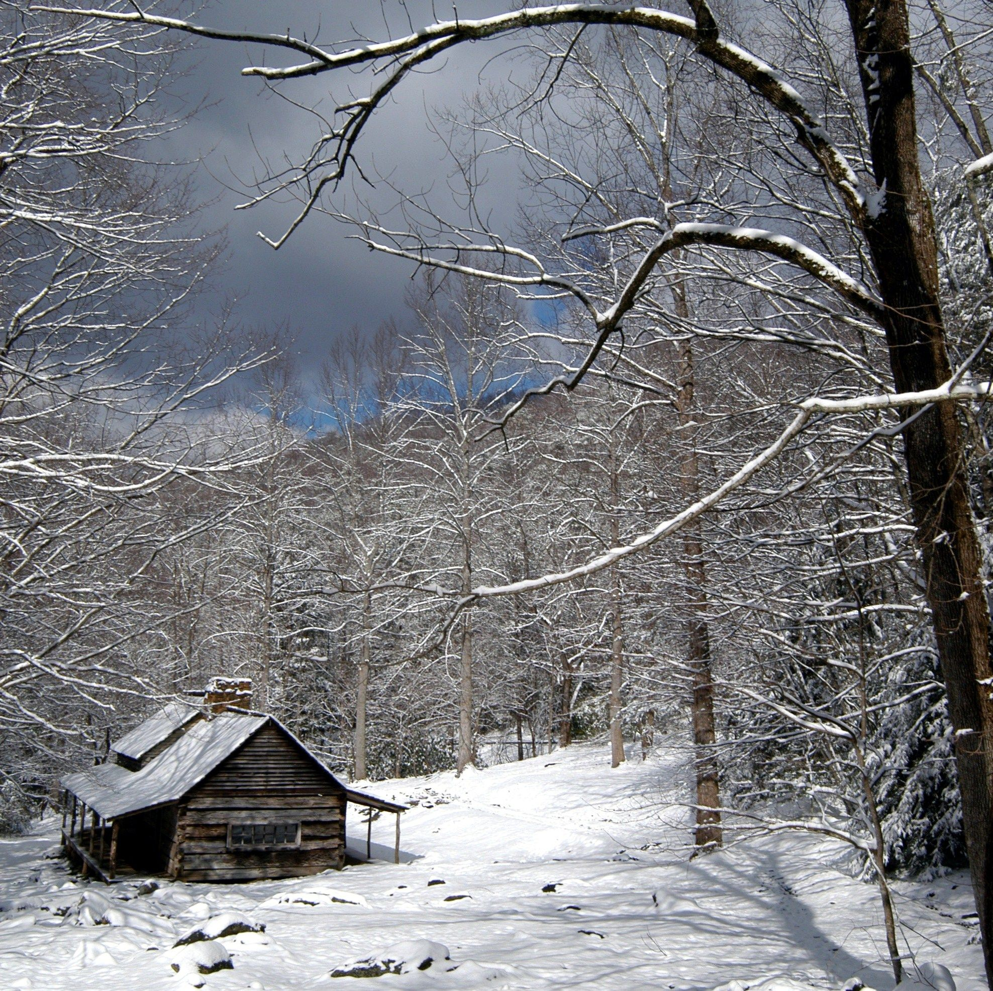 Winter is like a wonderland when it comes to the Smokies.