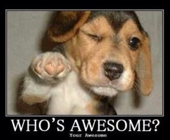 Who's awesome?  Your awesome!!!!!