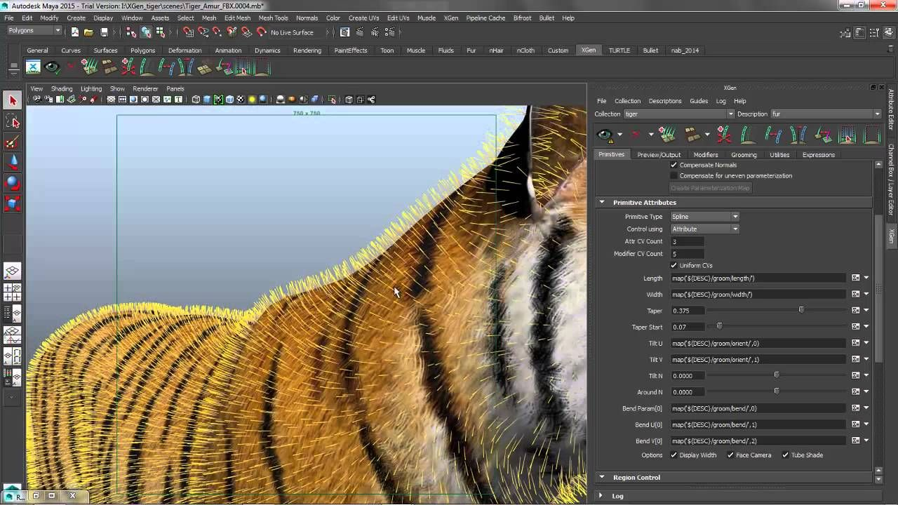Tips And Tricks To Do Short Hair In Maya Using Xgen Look At My Channel