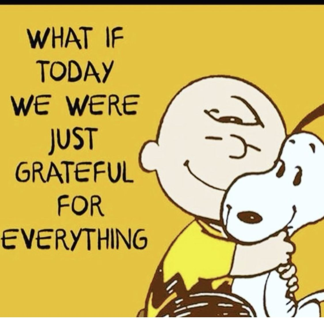 Pin by Warren on #Words   Snoopy quotes, Snoopy