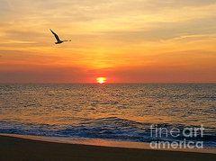 William Fuhrer - Summer Sunrise http://william-fuhrer.fineartamerica.com/