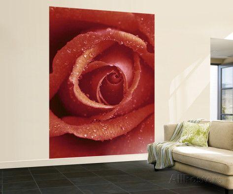 Red Rose Huge Wall Mural Art Print Poster Mural art Wallpaper