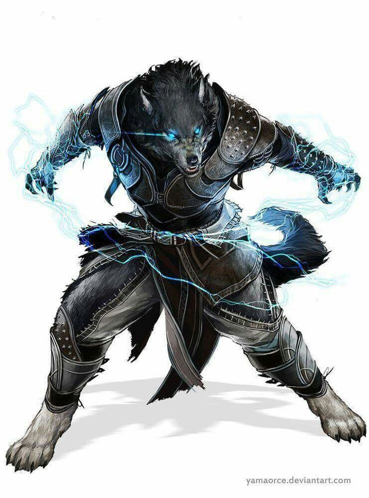 Image Result For Snow Leopard Tabaxi Personajes De Fantasia Licantropo Criaturas Mitologicas He's afraid of hurting birds, if one lands on him he will become almost paralyzed as he begins to profusely sweat. image result for snow leopard tabaxi