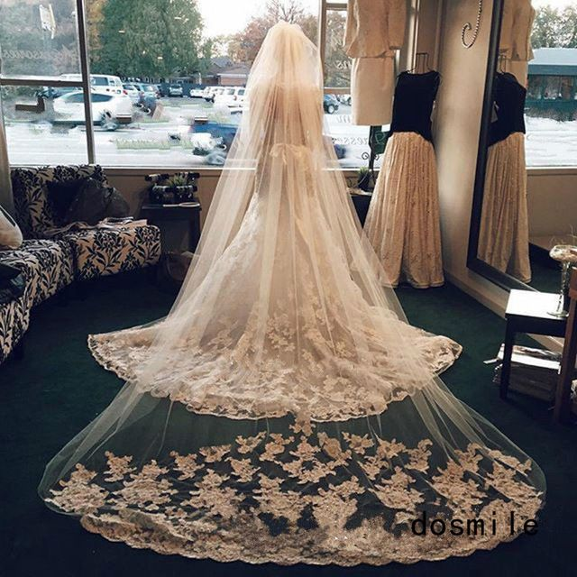 Champagne Ivory White Wedding Bridal Veil 1T Long Cathedral Length Lace 3M