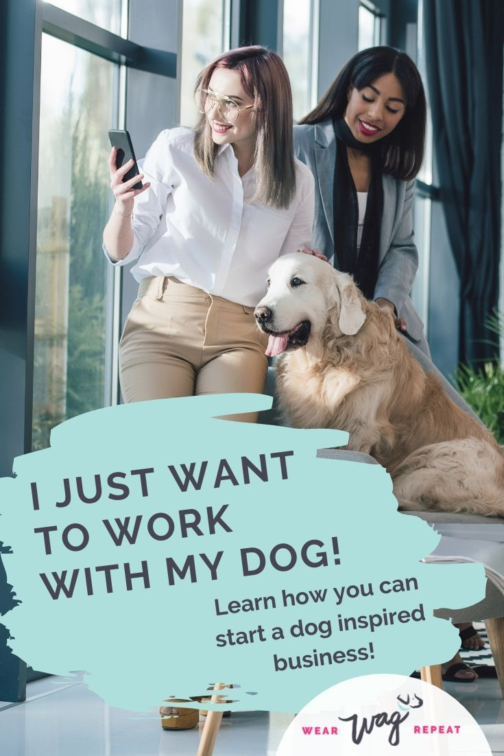 Working with pets how to start a successful dog business