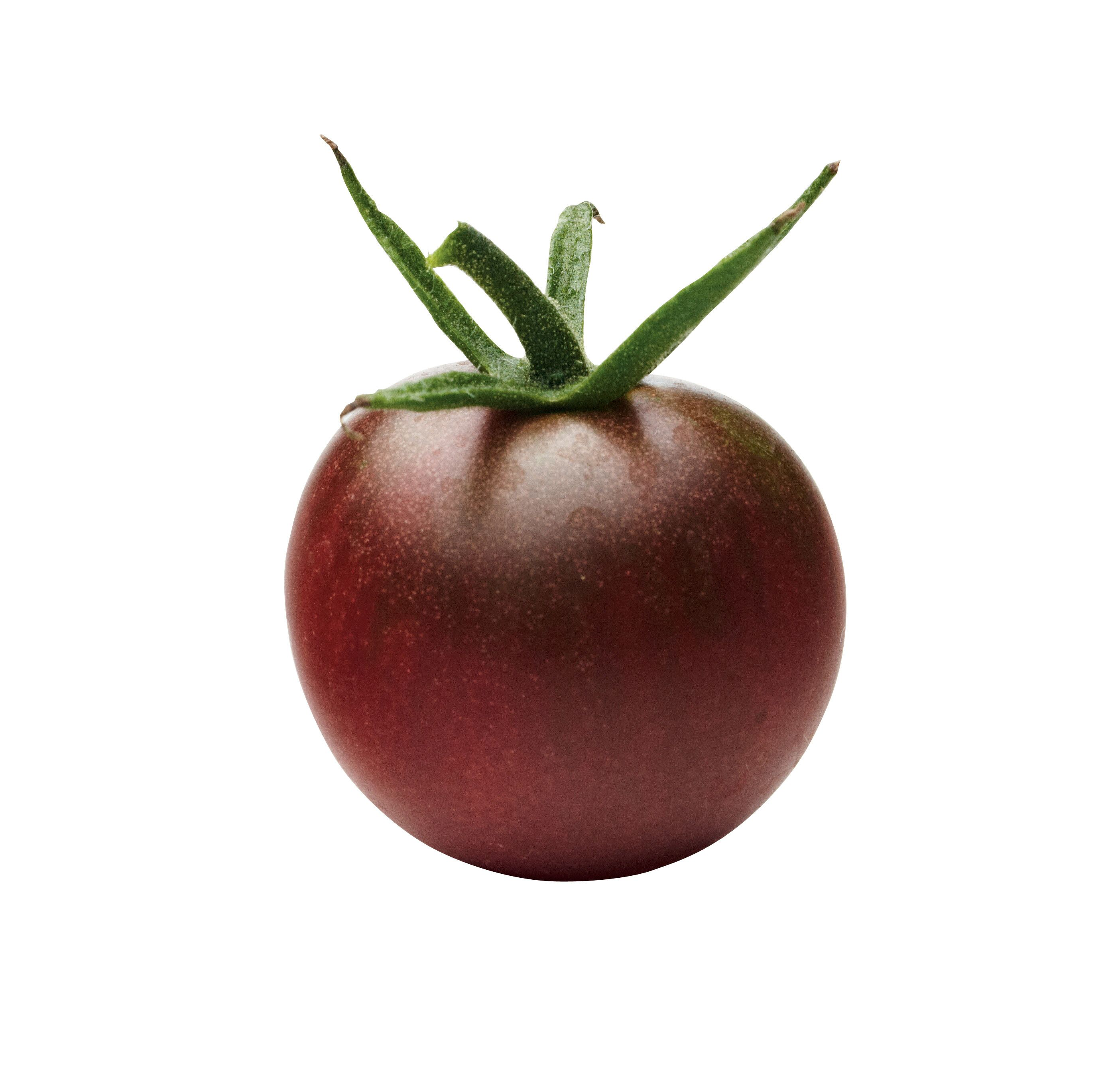 Homegrown Tomato Varieties