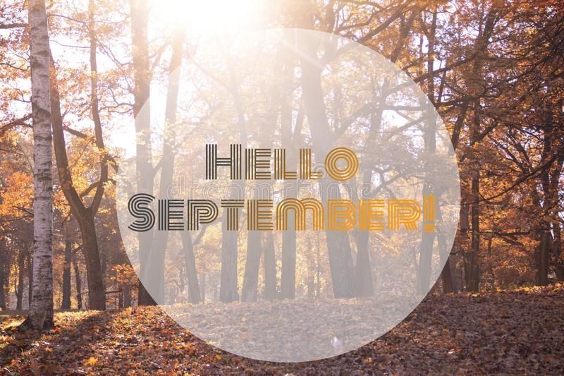 Hello September banner. New month. Greeting card. Golden autumn. The text in the photo. Trees in the park. City Park. Autumn Park royalty free stock photos #helloseptember Hello September banner. New month. Greeting card. Golden autumn. The text in the photo. Trees in the park. City Park. Autumn Park royalty free stock photos #helloseptember Hello September banner. New month. Greeting card. Golden autumn. The text in the photo. Trees in the park. City Park. Autumn Park royalty free stock photos #helloseptember