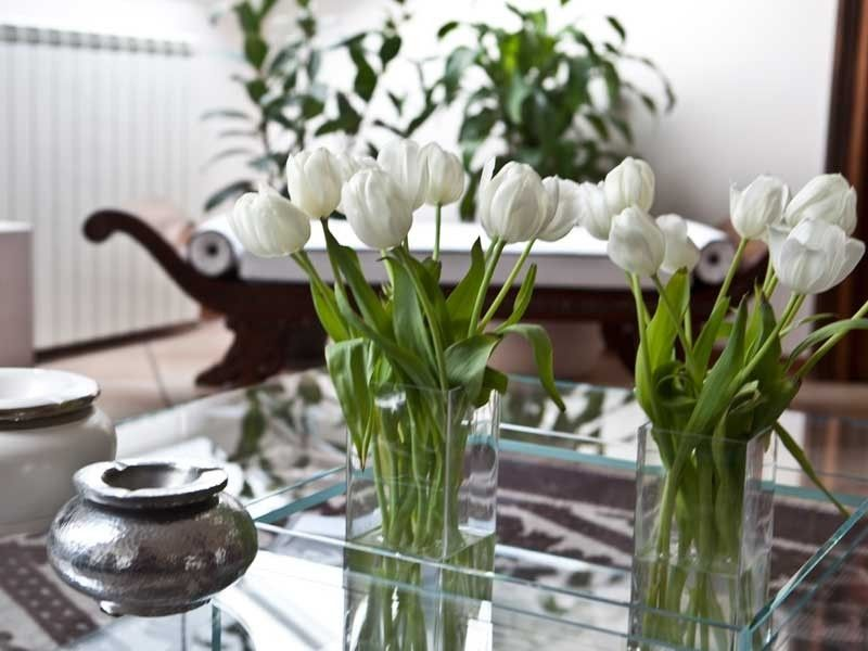 Arredamento Piante ~ Primavera arredo la casa con i fiori e le piante quale periodo é