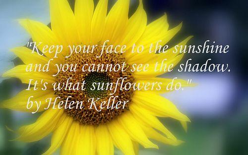 Sunflower poem iii gift ideas pinterest sunflowers
