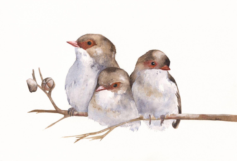 watercolor painting of birds | Wrens painting - W040- bird wildlife art nature - Print of watercolor ...