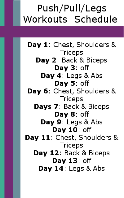 Push Pull Legs Workout Schedule