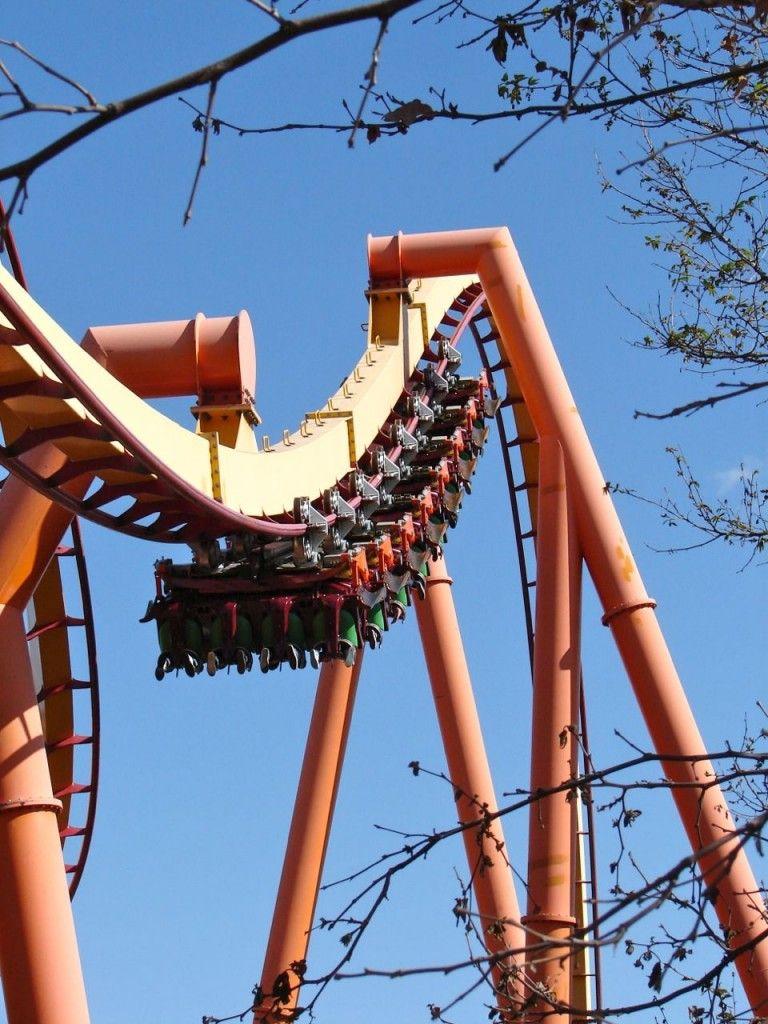 Tatsu Roller Coaster At Six Flags Magic Mountain The Coaster Guy Roller Coaster Six Flags Amusement Park Rides