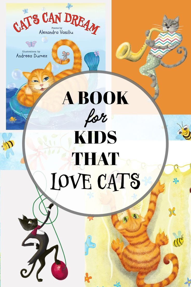 """If you enjoyed my hilarious rhyming picture book, """"Cats"""
