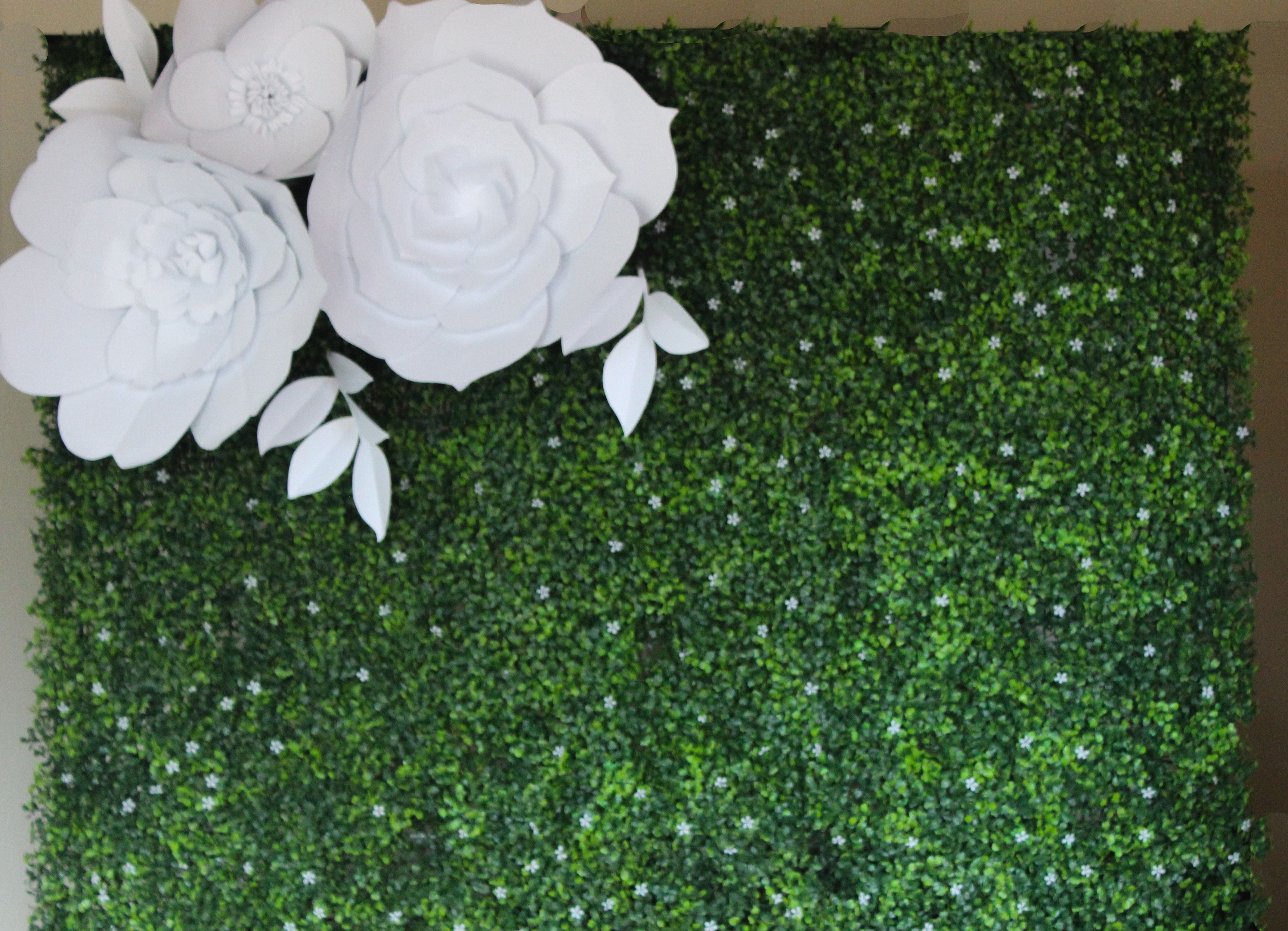 DNicole Settings Wedding Backdrop: Boxwood Wall with Large, White, Paper Flowers