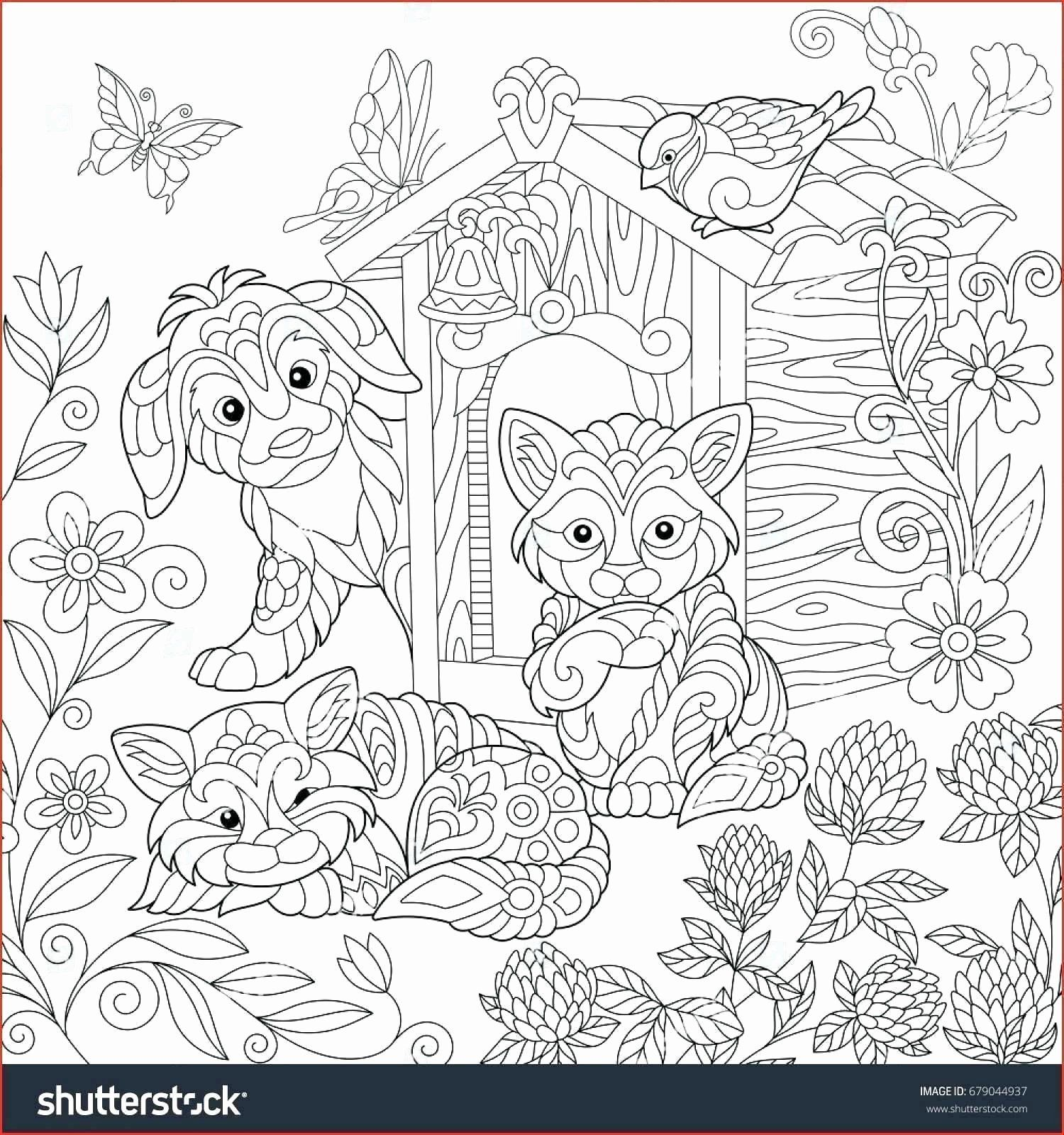 Coloring Sheets Cute Animals Elegant Pitbull Coloring Page Maximosheet Cat Coloring Page Puppy Coloring Pages Dog Coloring Page