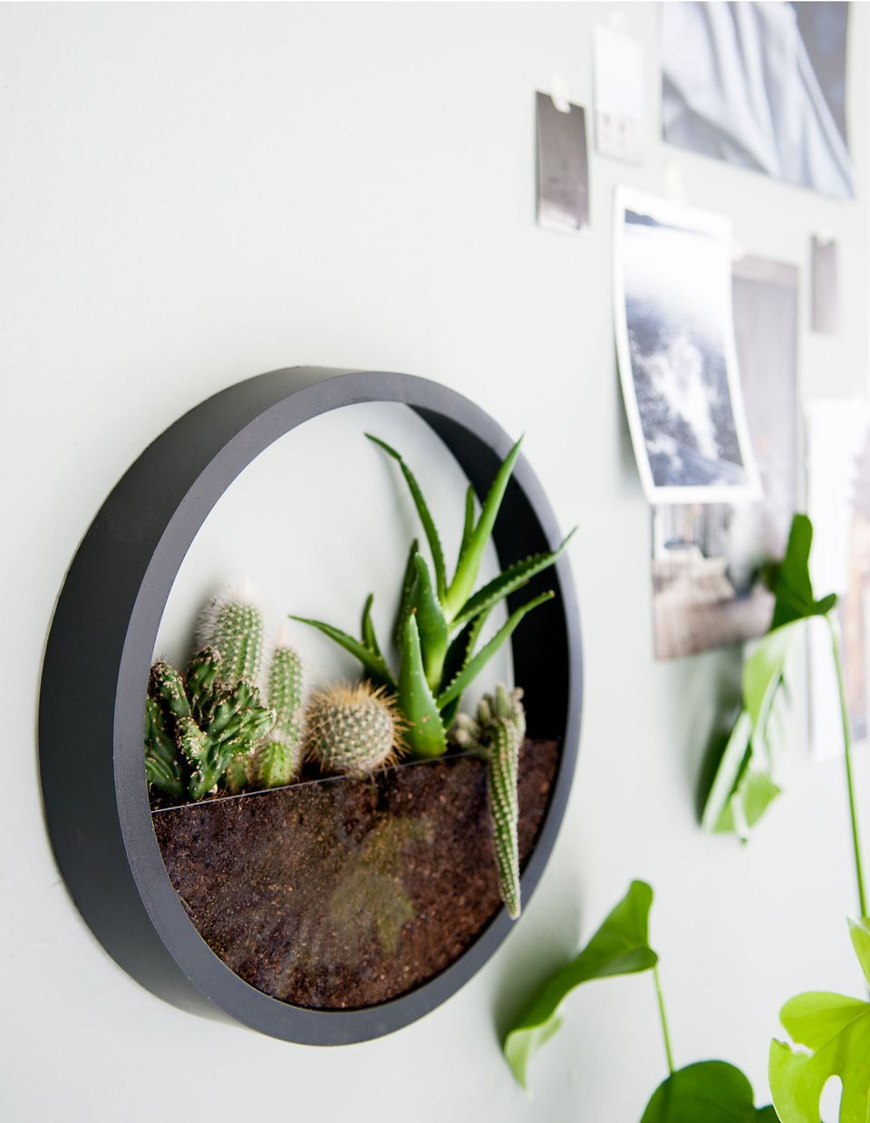 8 id es diy pour cr er un terrarium diy pinterest - Pinterest fruhlingsdeko ...