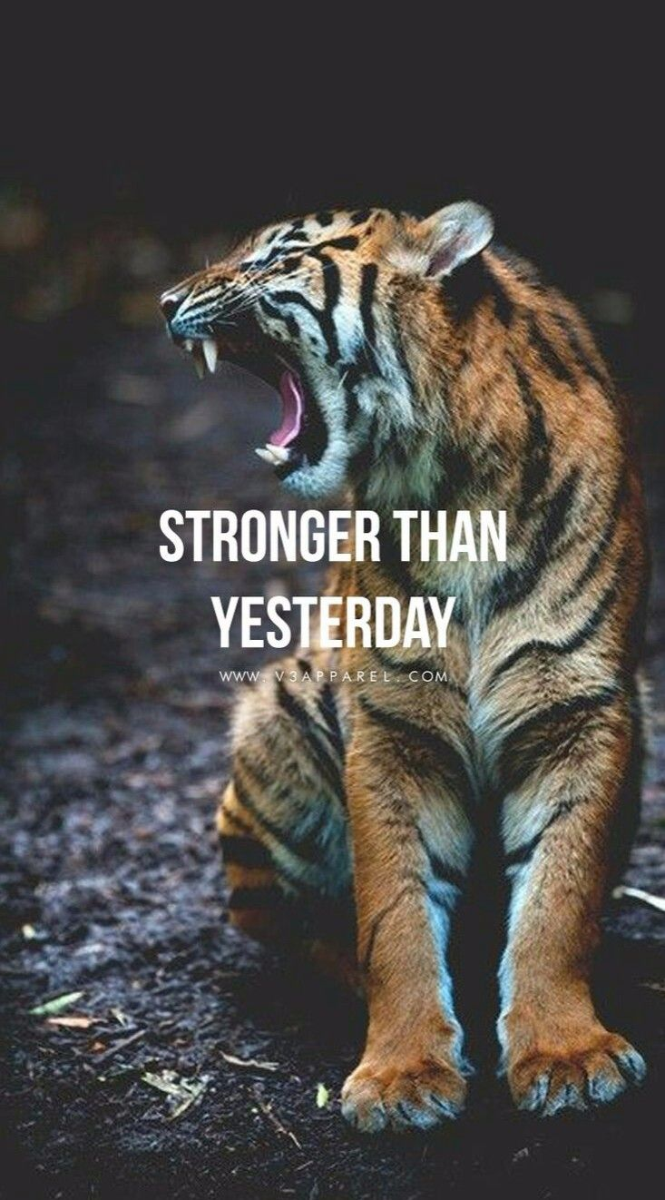 Pin by Tony Toranza on tigers | Motivational Quotes, Fitness