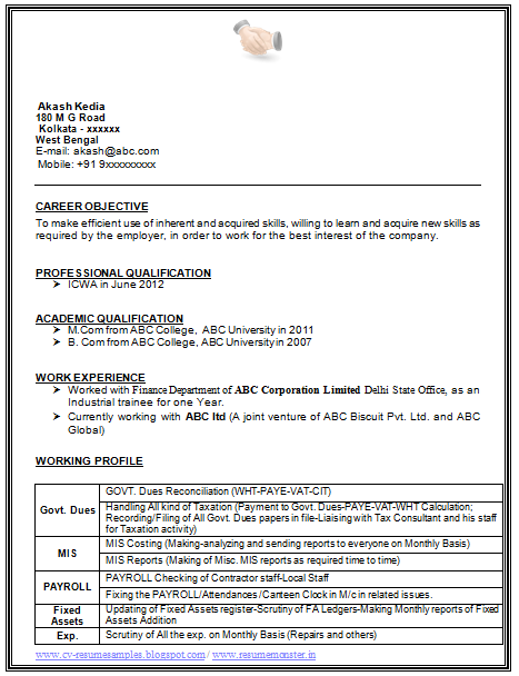 Sample Template Example Of Beautiful Excellent Professional Curriculum Vitae Resume Objective Sample Professional Resume Samples Career Objectives For Resume