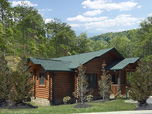 Gatlinburg Cabin Absolute Adventure 1 Bedroom Sleeps 4 Honeymoon Cabin Gatlinburg Cabins Romantic Cabin