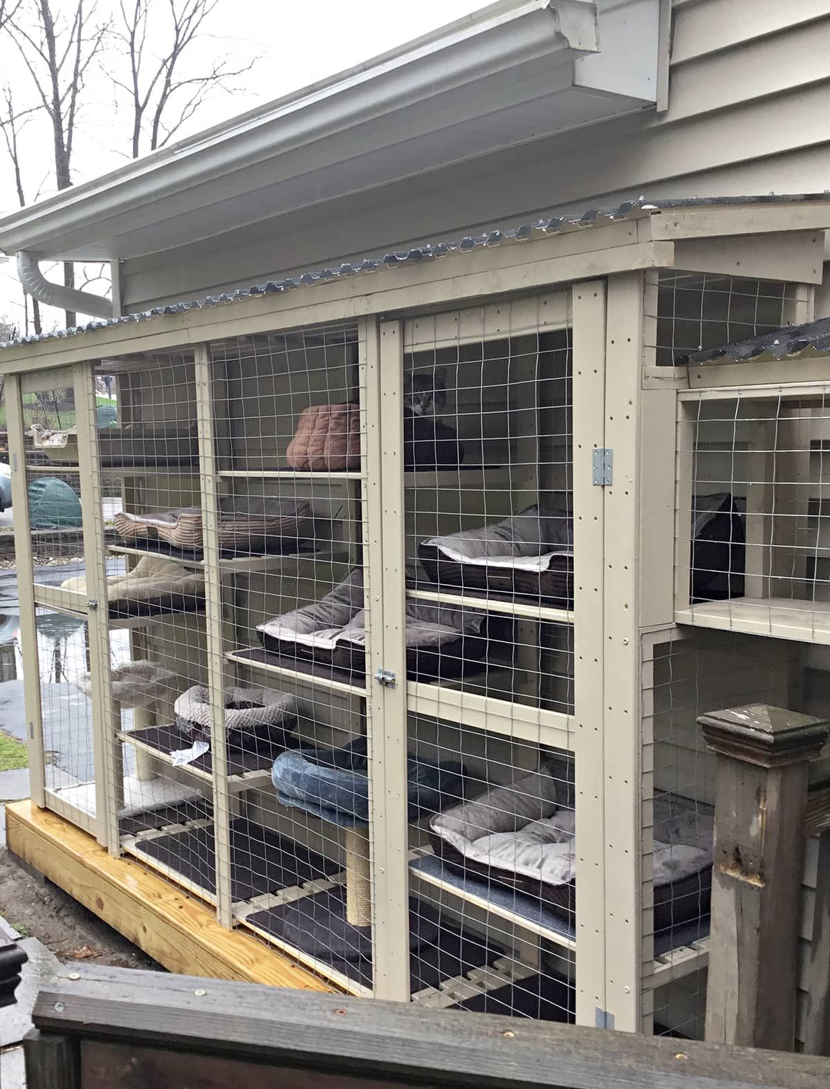 Outdoor Cat Cage Made From Wood Utility Shelving Cuckoo4design Cat Cages Outdoor Cat Cage Outdoor Cats