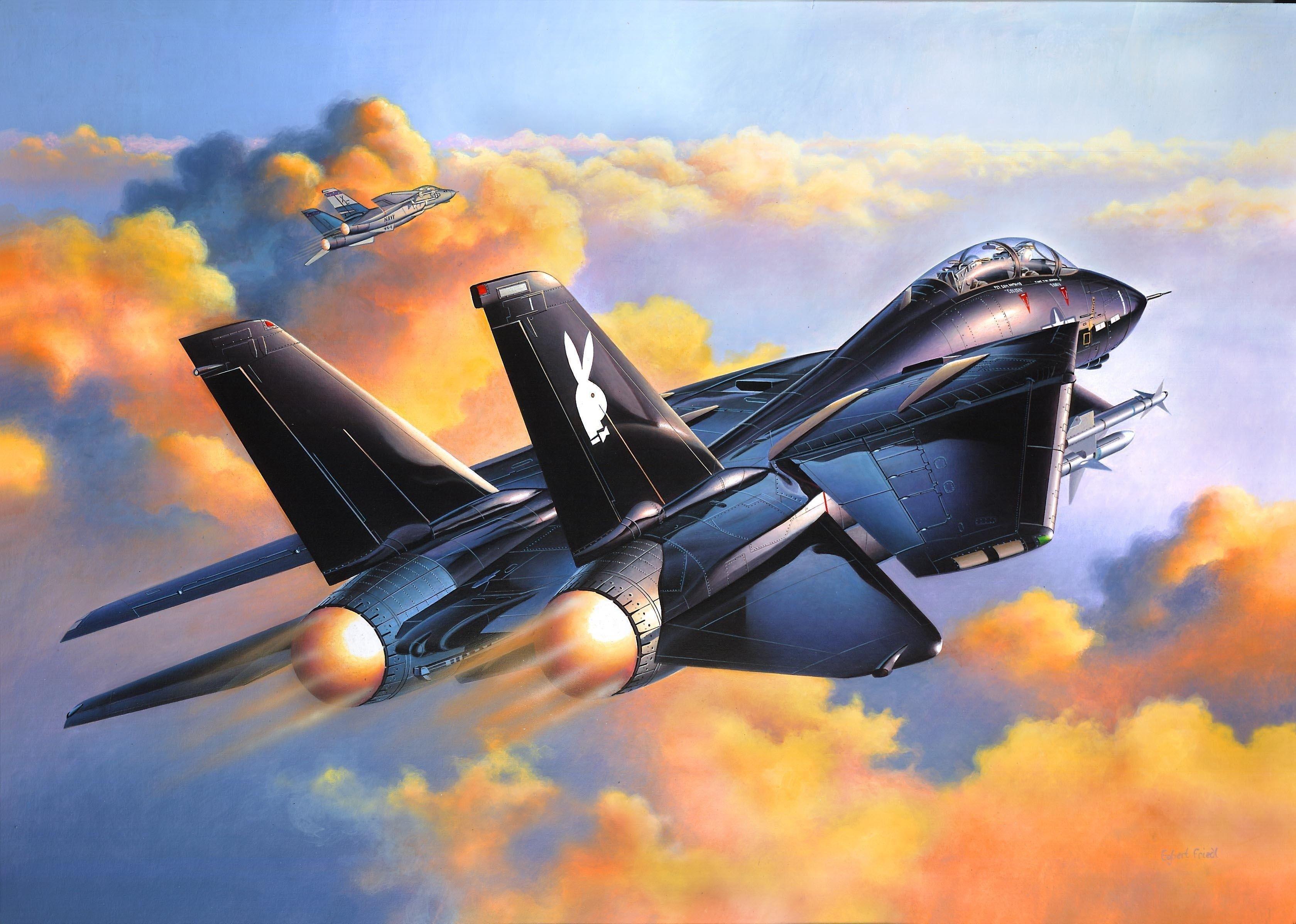 3359x2397 High Resolution Wallpapers Widescreen Grumman F 14 Tomcat Fighter Jets Aircraft Art Military Aircraft