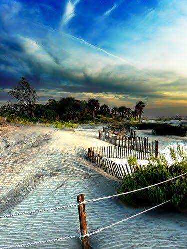 The Beach At Hunting Island, South Carolina
