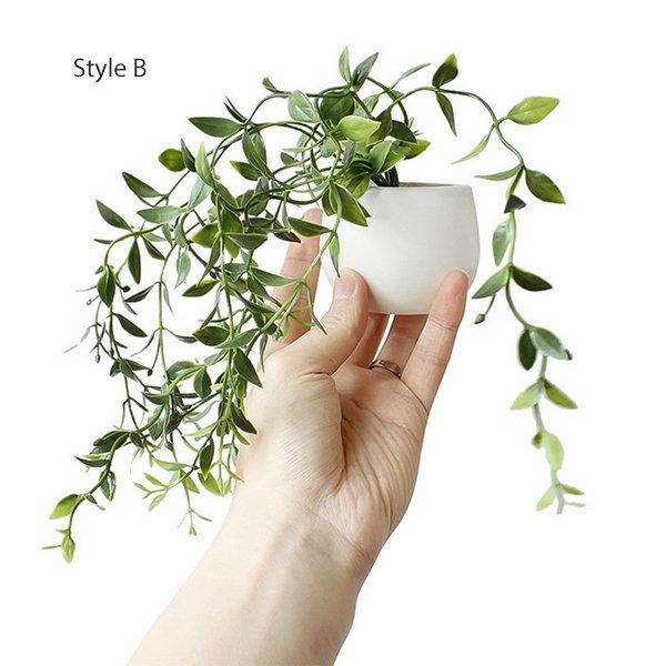 Small Succulent Fridge Magnet from Apollo Box
