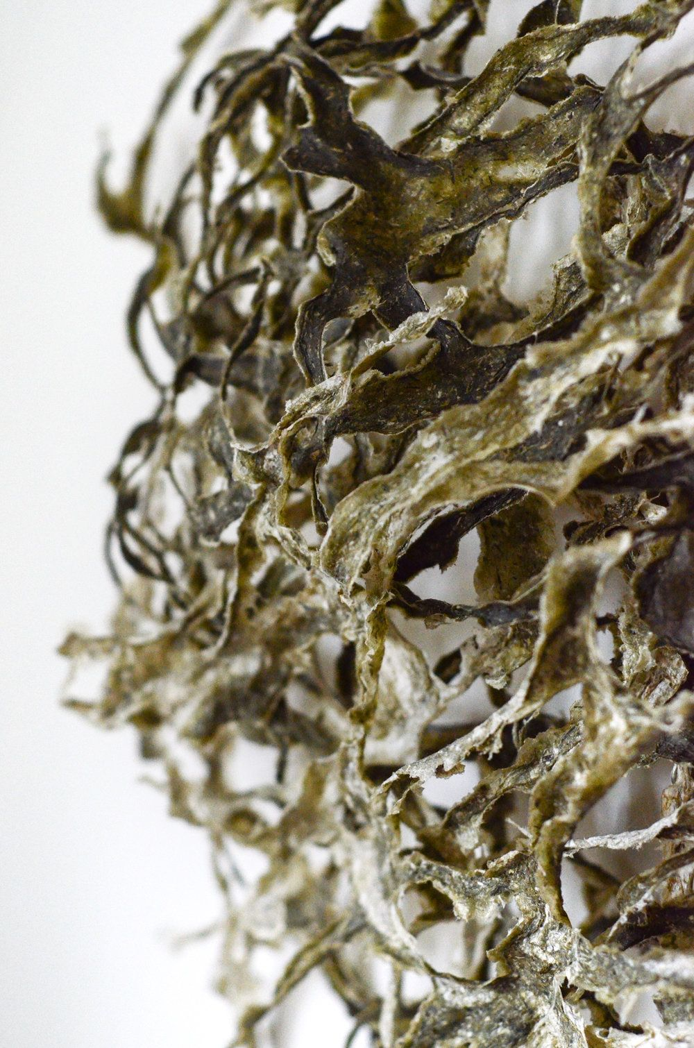 Handmade Paper Art Sculpture From Seaweed Blind Wave Drawing May