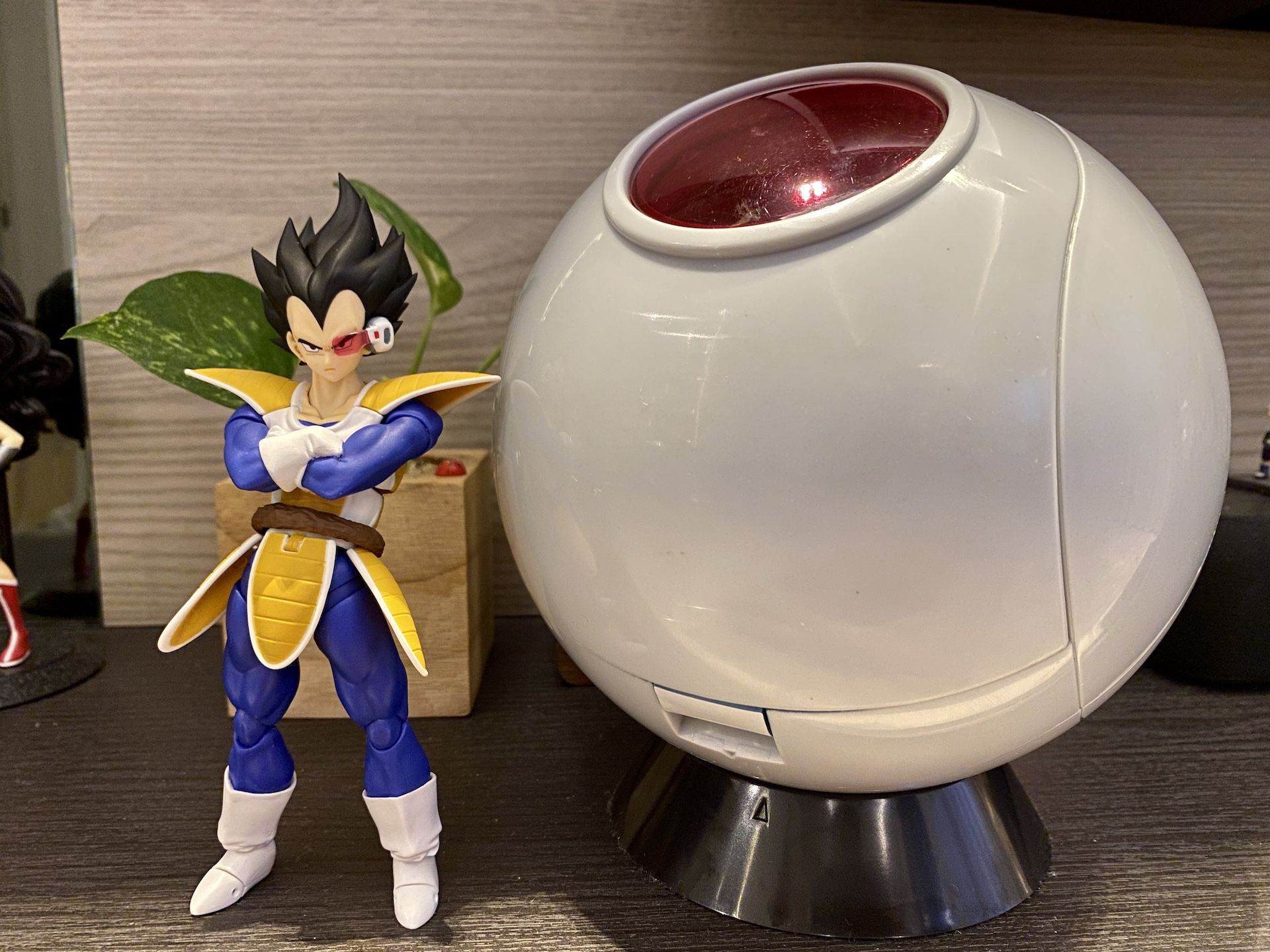 Toy Photography SH Figuarts DBZ Vegeta 2.0 with 1/12