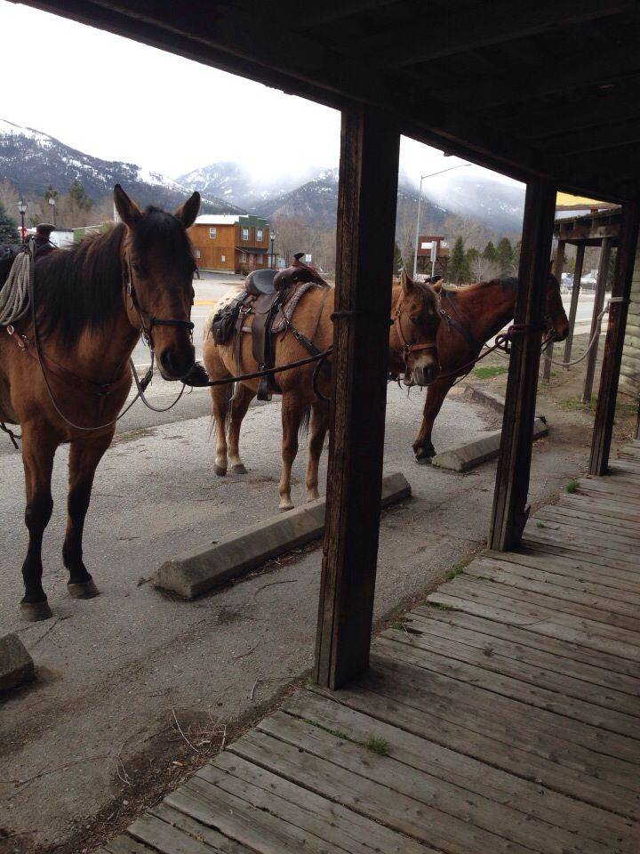 Victor, MT, my home town! And where people still ride horses to the bar!