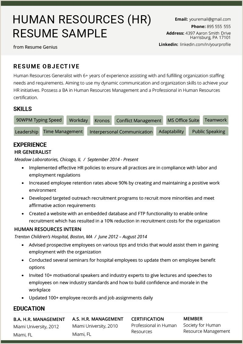 Cv Format Hr Executive Fresher Human Resources Resume Resume Objective Examples Hr Resume