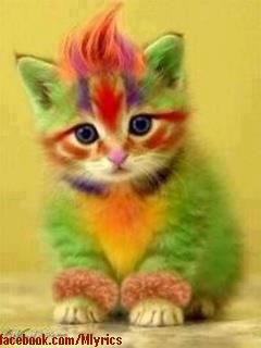 Why paint kittens?