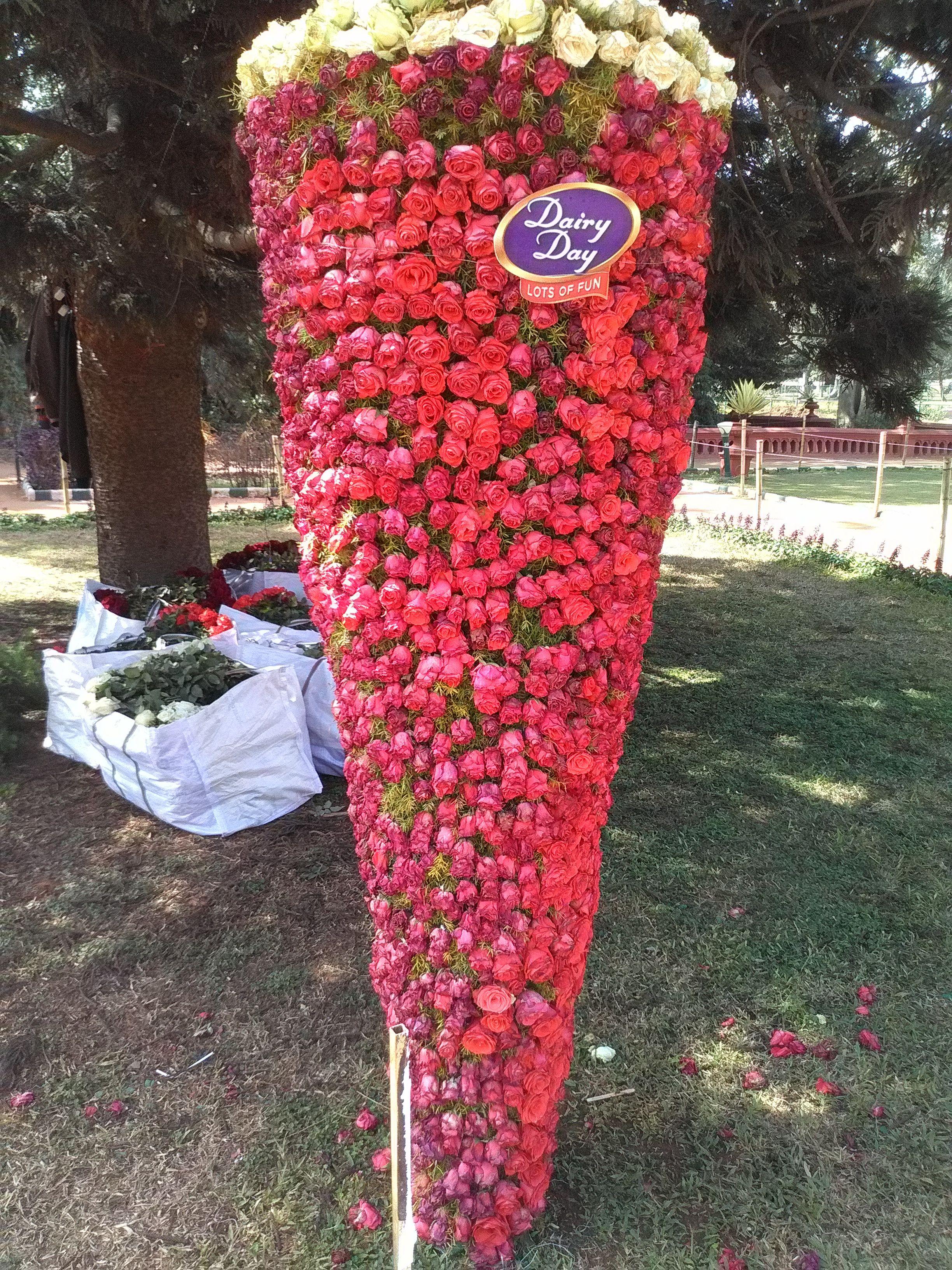 512fe697b9ad Flower Show at Lalbagh Botanical Gardens