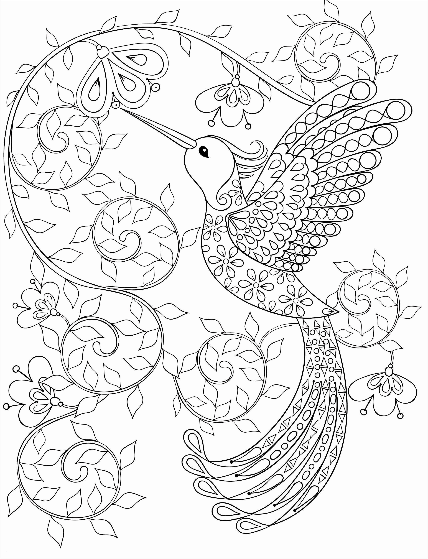 51 Das Beste Von Ausmalbilder Herz Bilder Vogel Malvorlagen Malbuch Vorlagen Malvorlagen Blumen