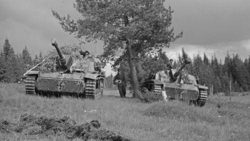 Rynnäkkötykit odottavat taistelukäskyä Hanhijoella 23. kesäkuuta 1944.