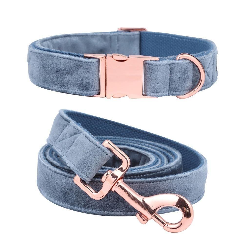 Blueberry Velvet Dog Collar, Leash, or Set Gold dog