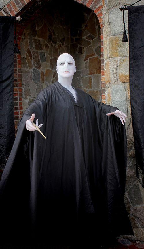 Mr. Freeze als Lord Voldemort