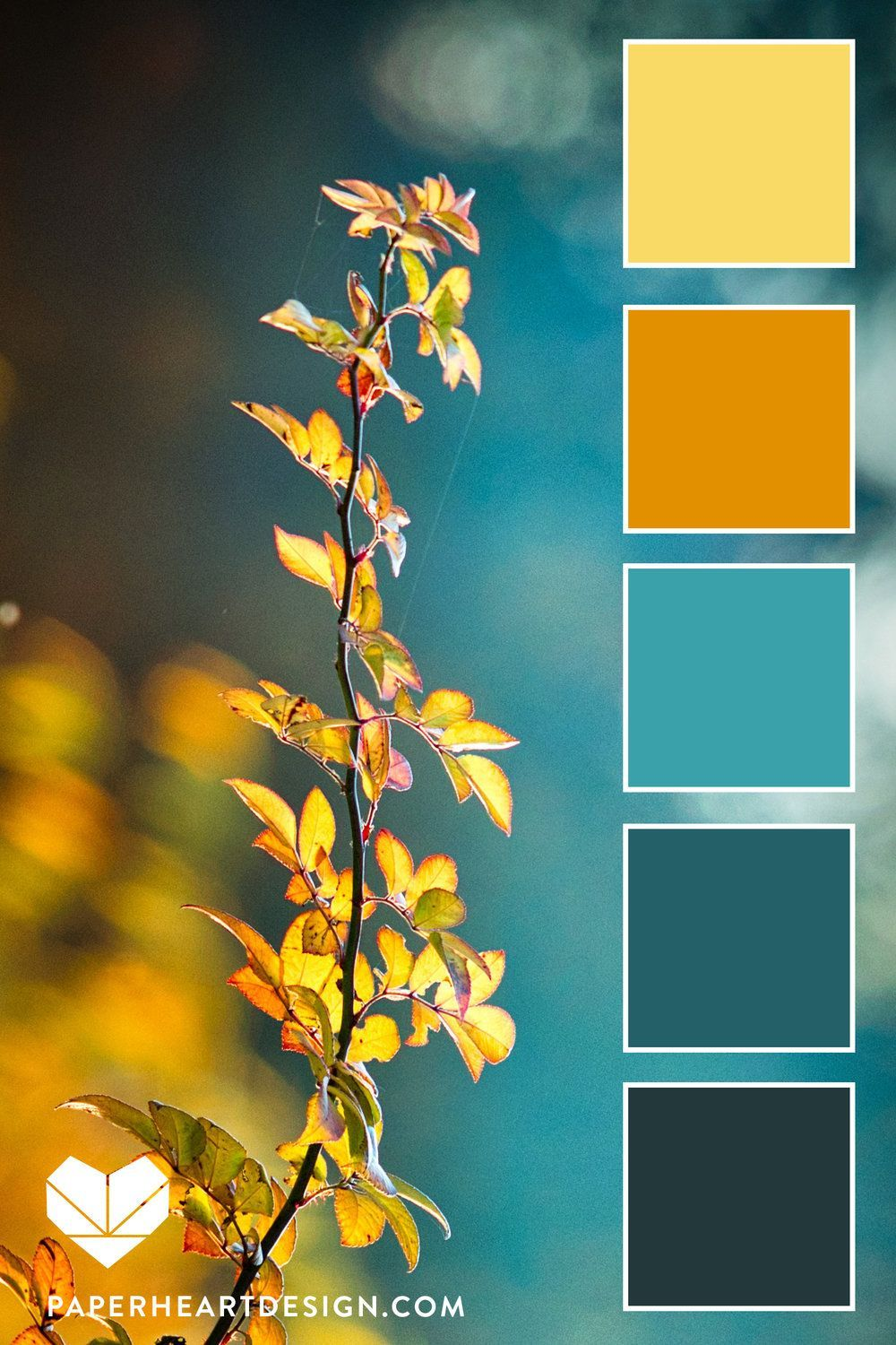 Color Palette: Fall Leaves