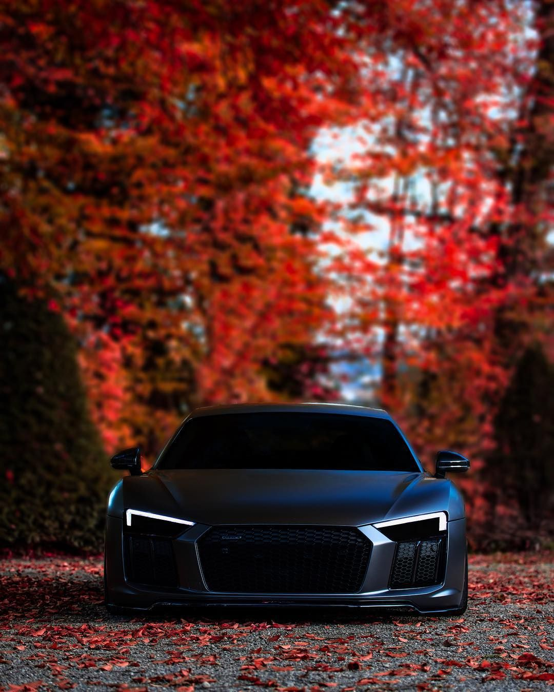 "Photographer on Instagram: ""autumn with this beast is such a pleasure. @signorino__  #audi #r8 #autumn #shooting #bmw #photography #red #color #beast #monster #ring…"" #audir8"