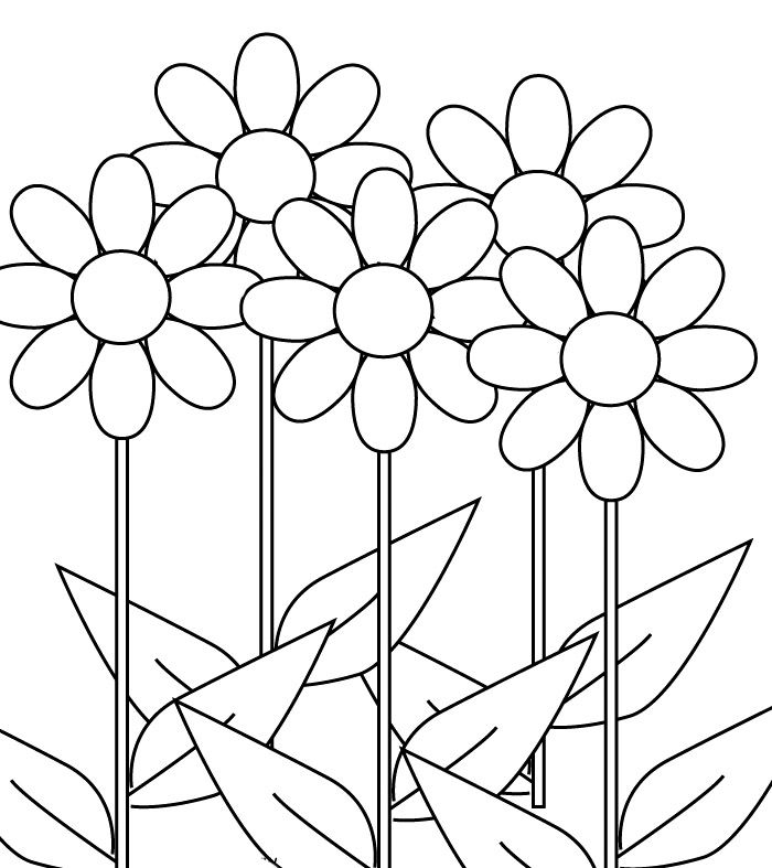 Flower Tropical Flower Coloring Pages Sunflowers In A Vase