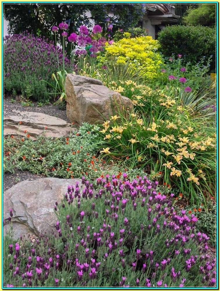 How To Match The Style Of Your Home With Low Maintenance Hillside Landscaping In 2020 Front Yard Landscaping Simple Landscaping With Rocks Rock Garden Landscaping