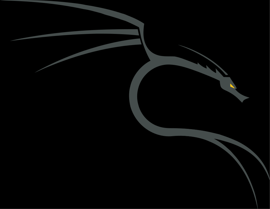 Kali Linux Dragon Edit Custom Backgrounds And Wallpapers In 2019