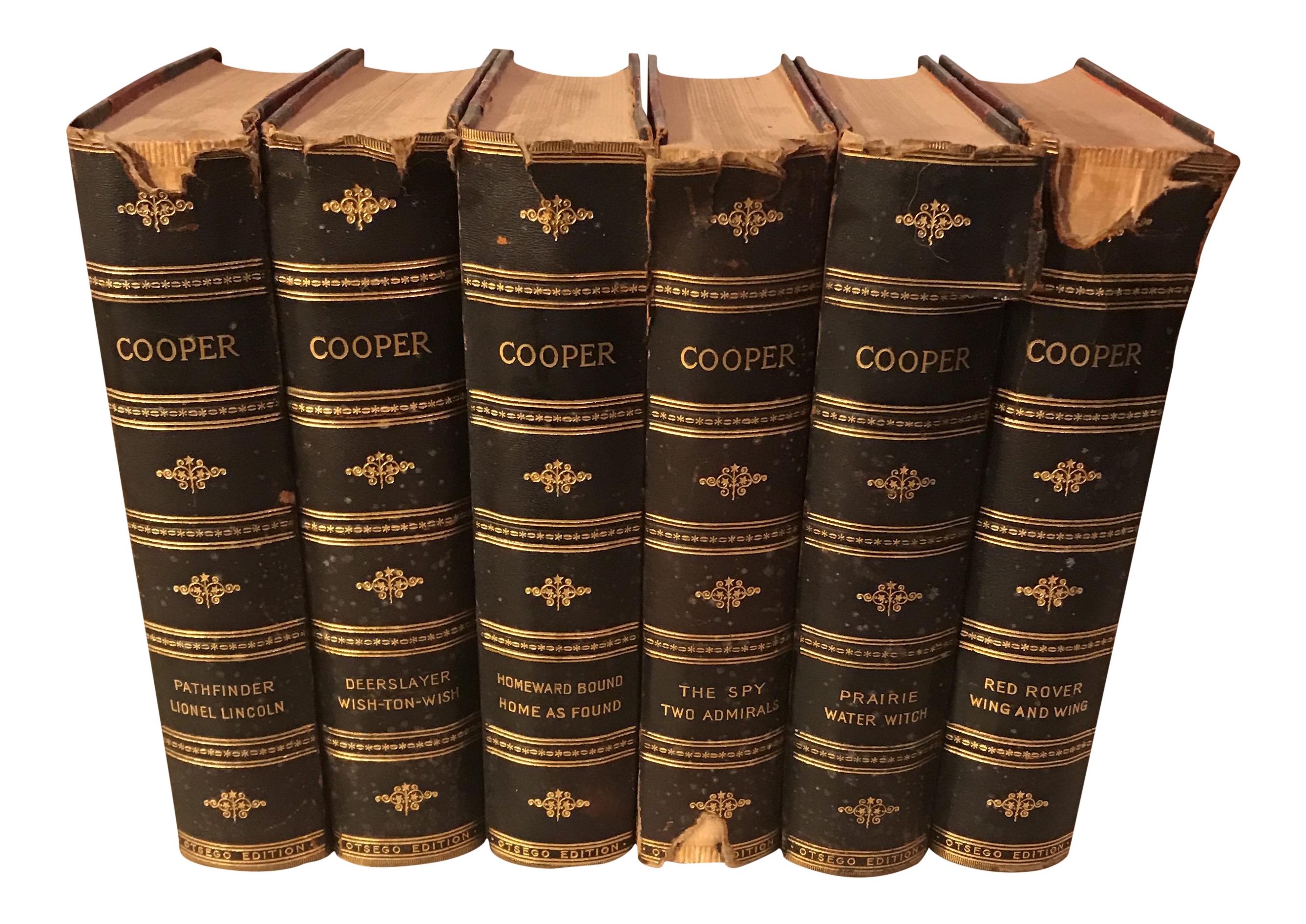 The Works of James Fenimore Cooper Decorative Books Set
