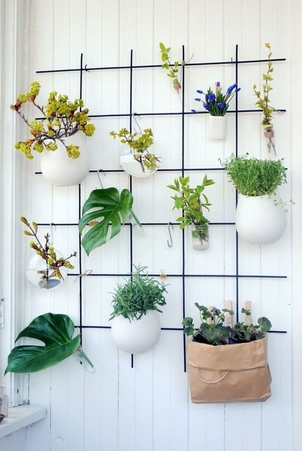 Ideas originales para decorar interiores con plantas for Adornos colgar pared