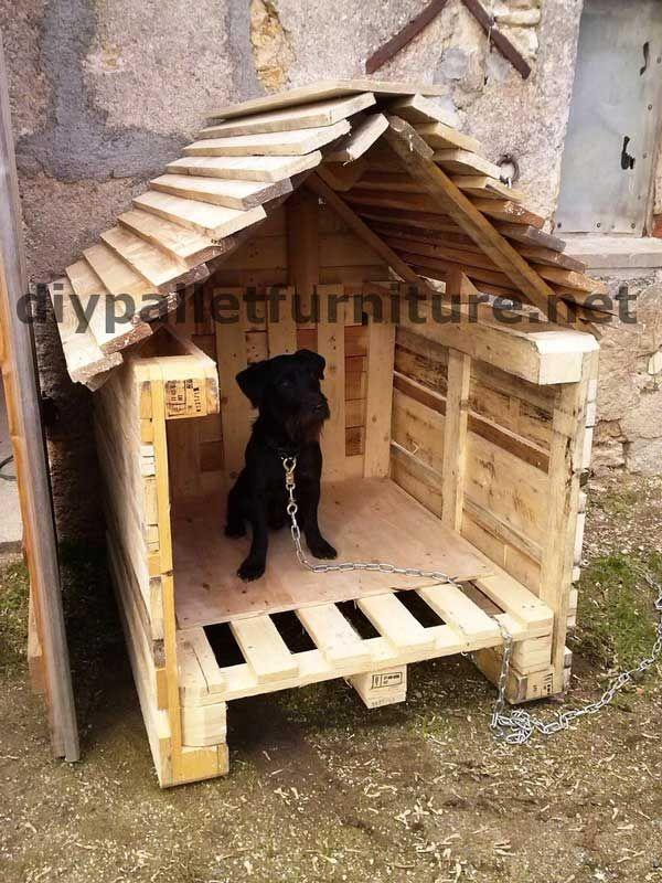 la niche avec palettes de manou projets pinterest le voir les chien et construction. Black Bedroom Furniture Sets. Home Design Ideas