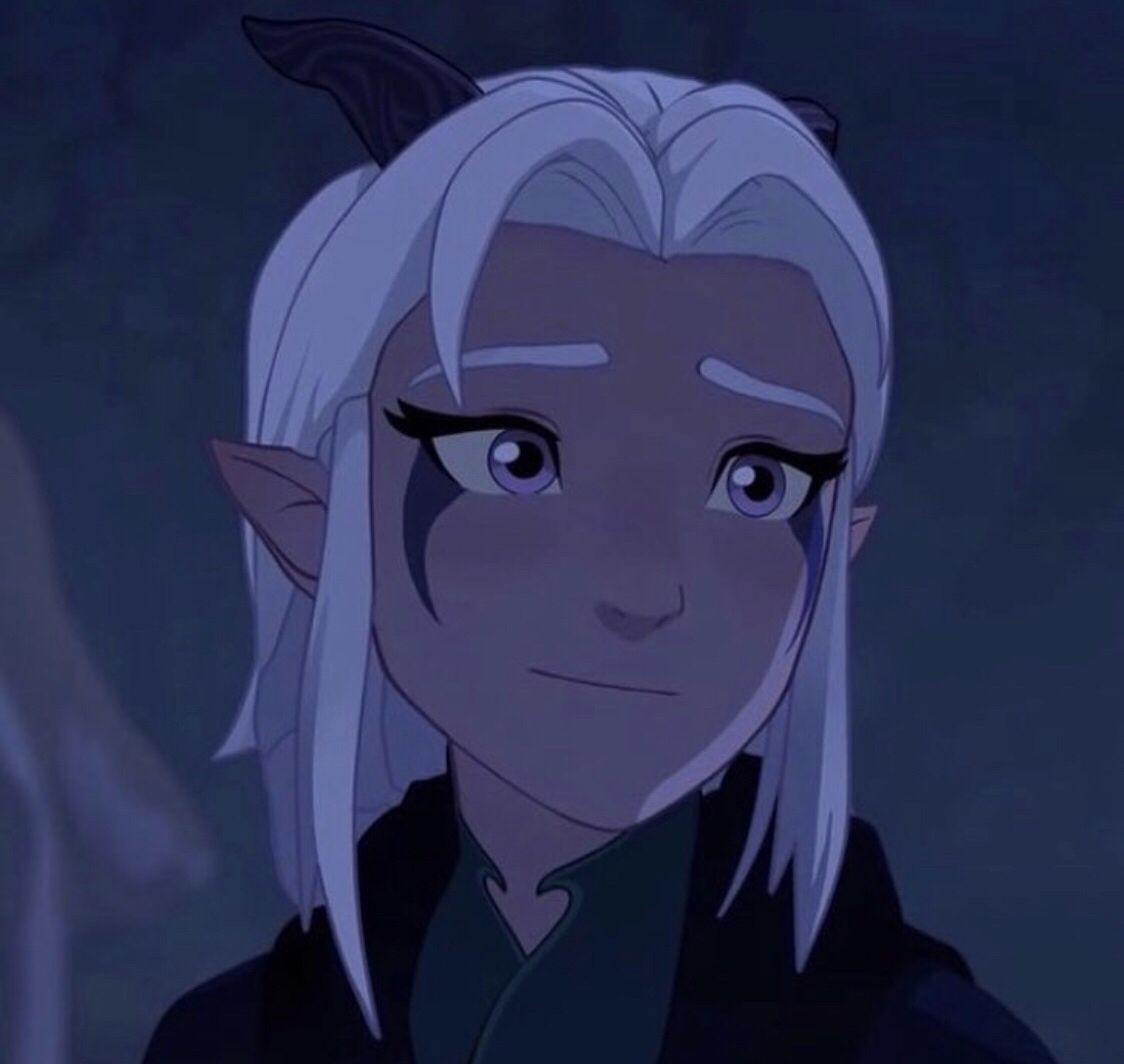 Rayla From The Dragon Prince Rayla Dragon Prince Dragon Princess Prince Dragon