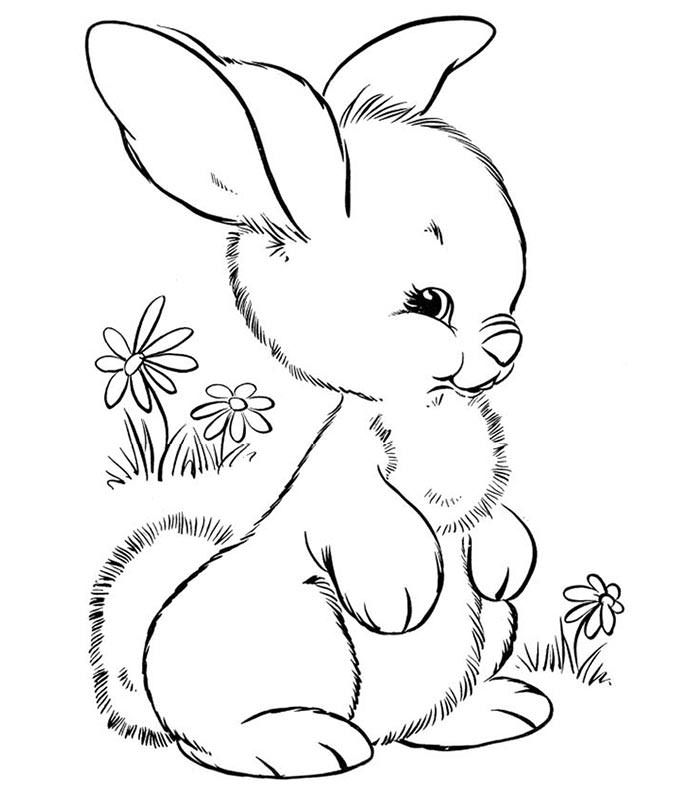 70 Animal Colouring Pages Free Download Print Free Premium Templates Easter Bunny Colouring Bunny Coloring Pages Cute Coloring Pages
