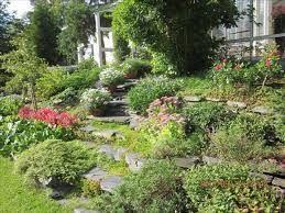 Kuvahaun tulos haulle puutarhat