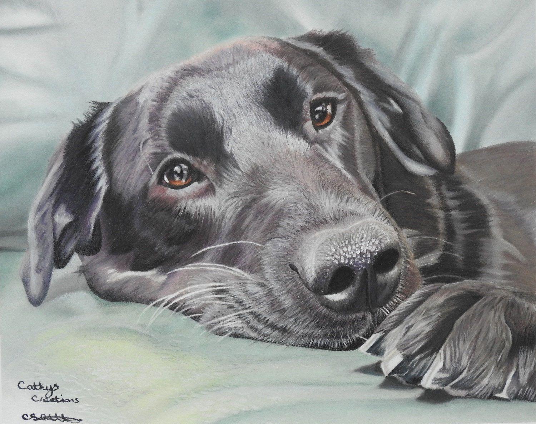 Black labrador greetings carddog greetings carddog lover